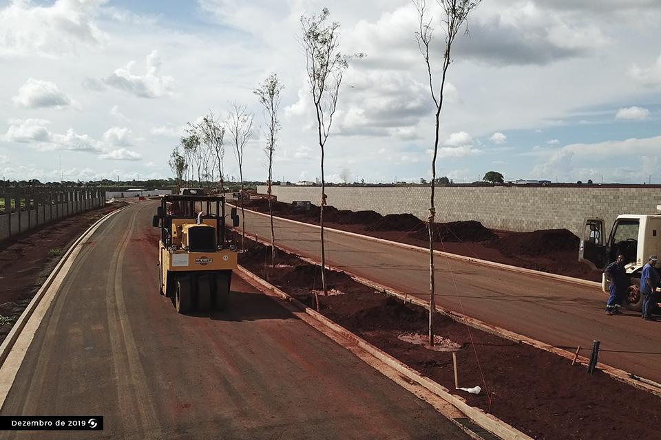 Obras Arborização Dom Redovino