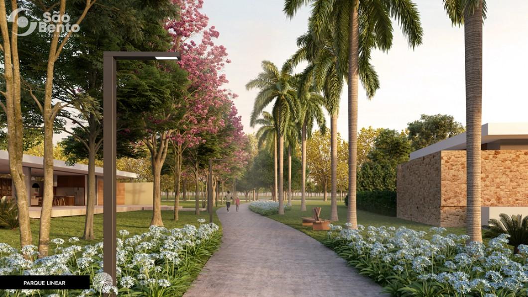 Parque Linear
